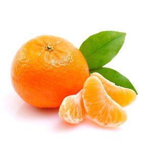 Mandarina Avocitrus